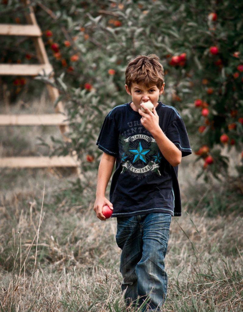 Česká konzumní jablka jsou vhodná pro děti. Pěstují se systémem integrovaného pěstování ovoce (SISPO).